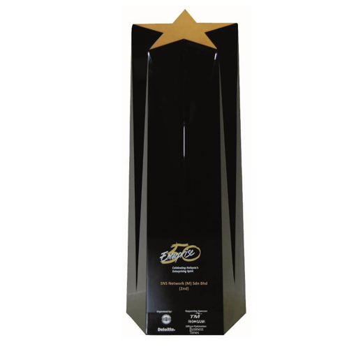 Top 2 Company in the Enterprise 50 Awards 2010 trophy 500x500